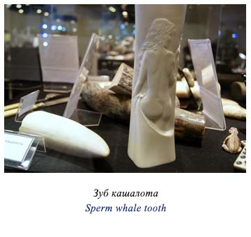 Sperm whale tooth