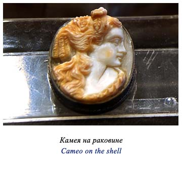 Cameo on the shell