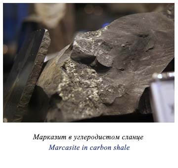 Marcasite in carbon shale