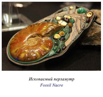 Fossil Nacre